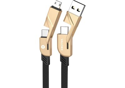 Valore 4-in-1 USB-C Braided Charging Cable (MA49)